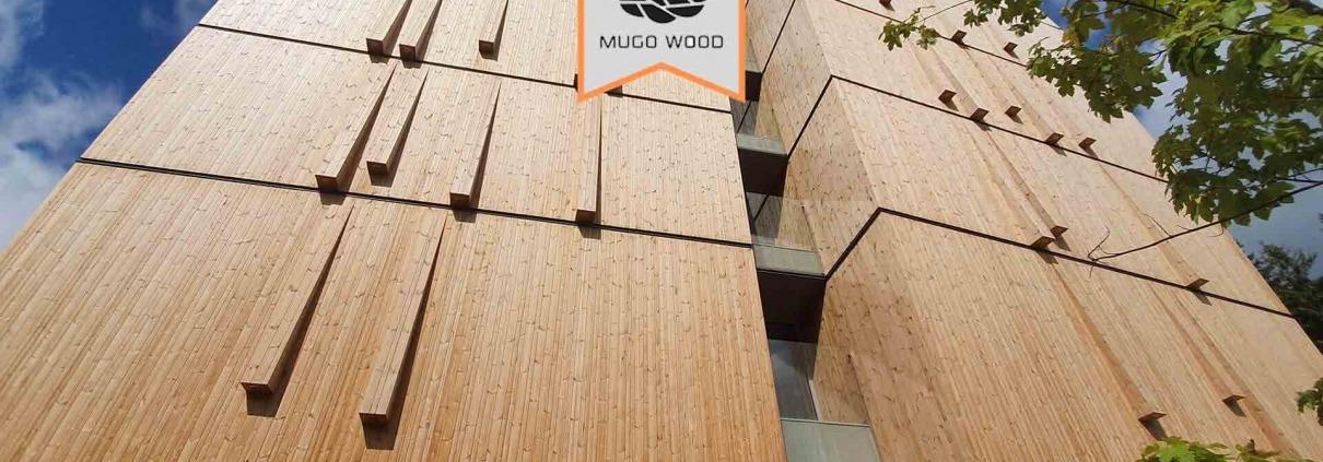 چوب ترمو قیمت - ترموود قیمت - قیمت هر متر مربع ترموود - خرید چوب ترموود - قیمت ترموود