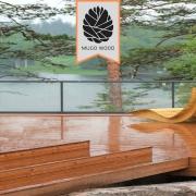 چوب ترموود فنلاندی 92*16 - چوب ترموود فنلاندی - چوب ترموود فنلاند - قیمت چوب ترموود - ترموود - ترمووود - ترموود ایرانی - چوب ترمو - چوب ترموود